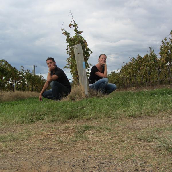 vinice konecna